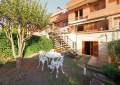 Golf St. Cugat - House on sale in Sant Cugat foto 8