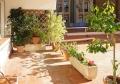 Sarrià / Pedralbes - Piso en alquiler en Sarrià foto 8